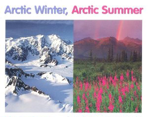 arctic-summer-winter